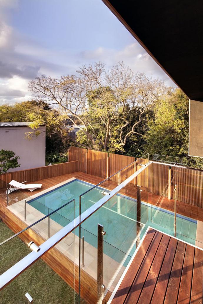 modern resident in sydney australia lawn swimming pool (7)
