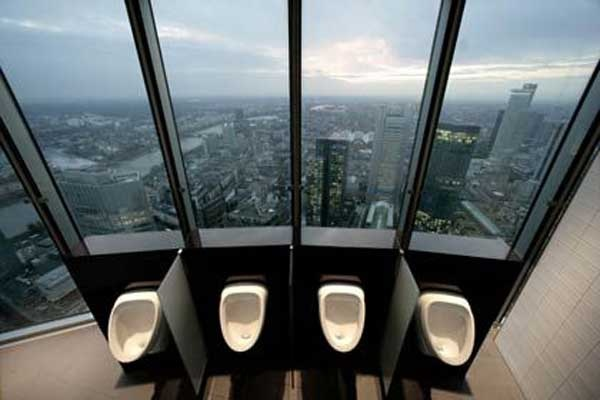 toilet ideas cool (12)