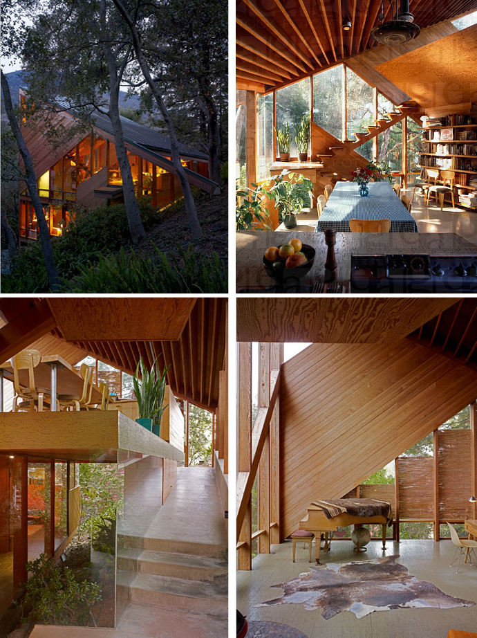 wood glass house in forest perfect living (1)