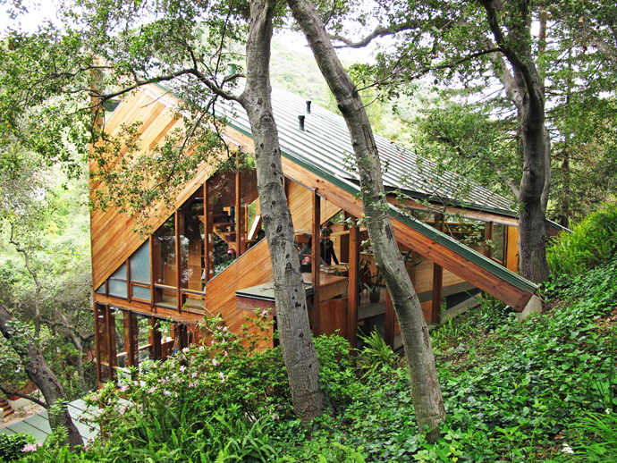 wood glass house in forest perfect living (5)
