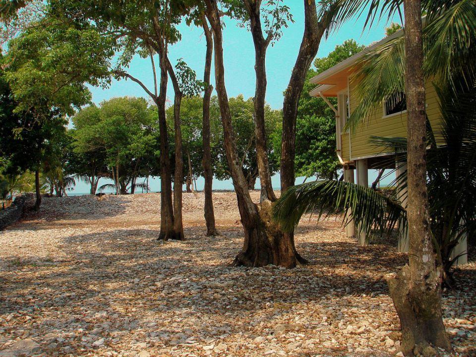 beach house in caribean perfect living (4)