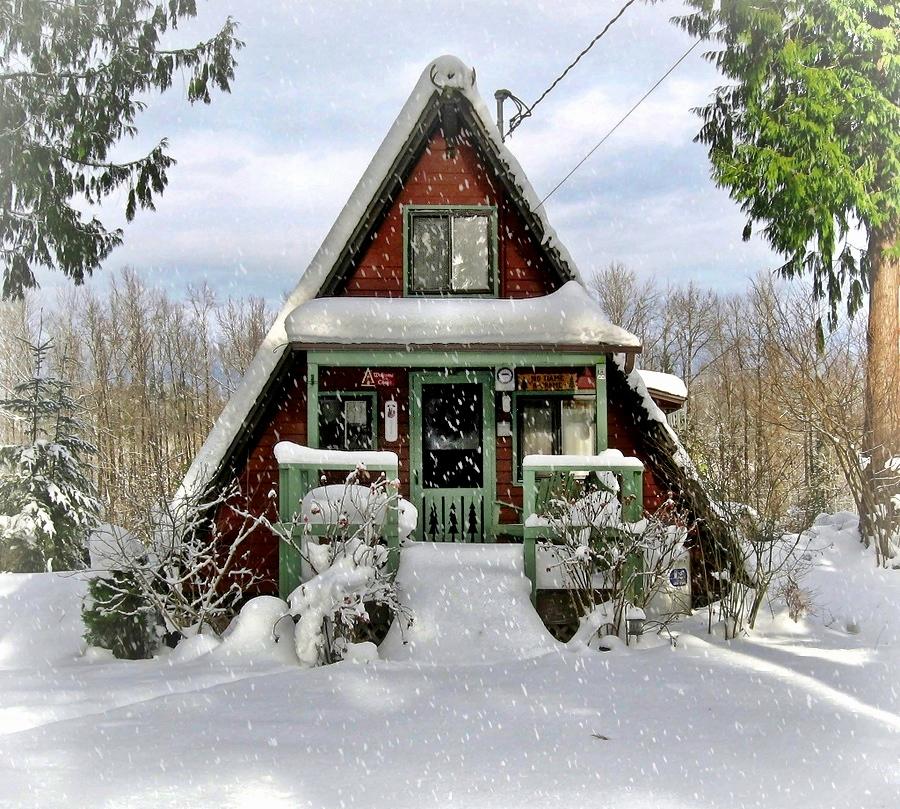 comfy-cabin-1