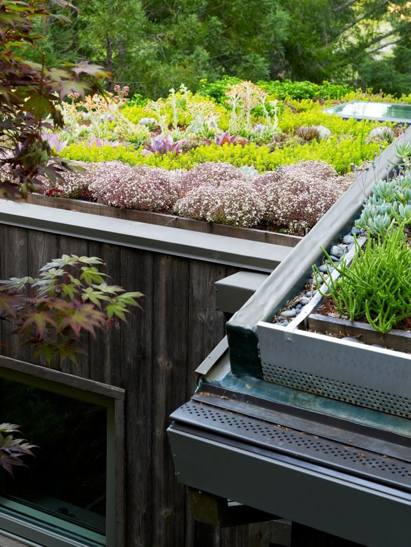 contemporary garden house (11)