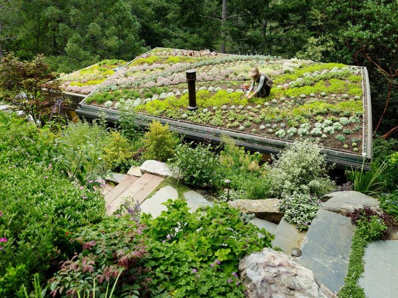 contemporary garden house (9)