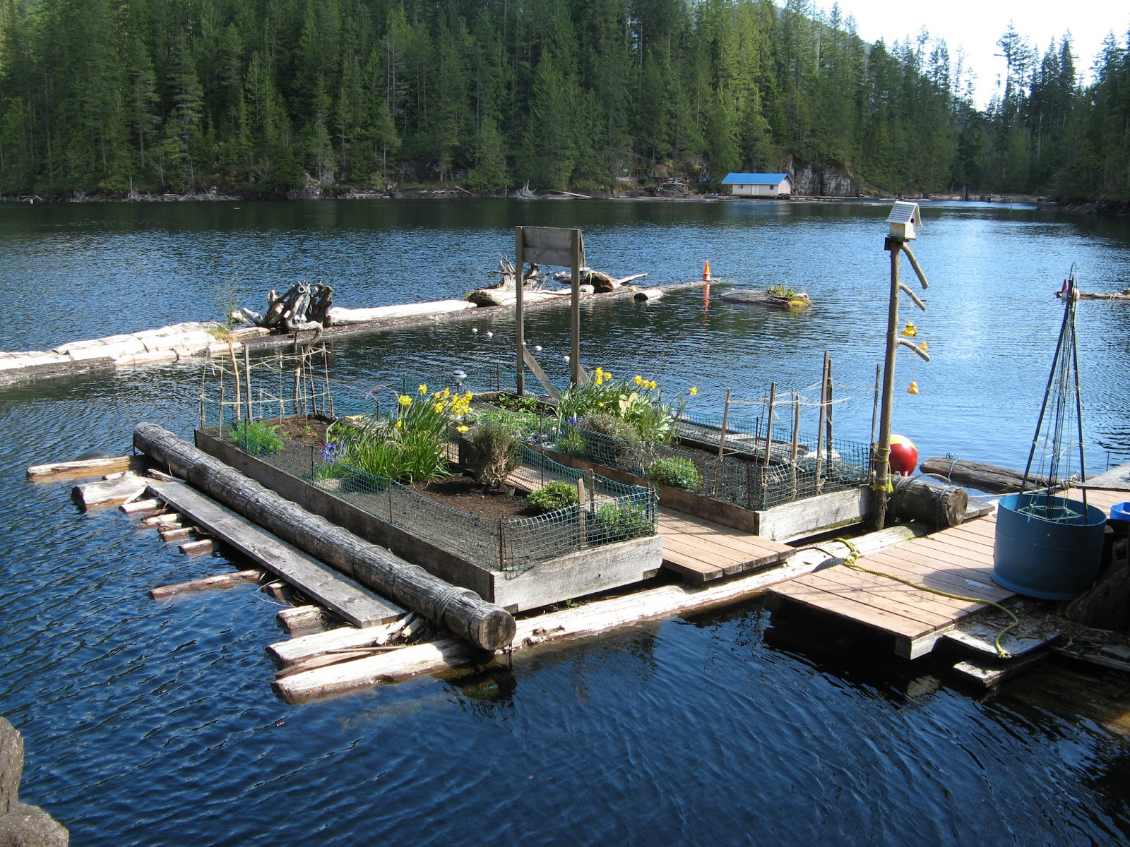 floating house cottage cabin in canada (6)