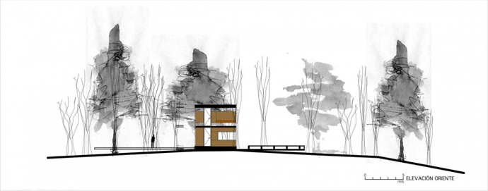 house modern contemporary in forest (11)