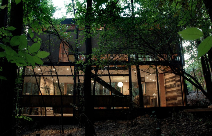 house modern contemporary in forest (19)