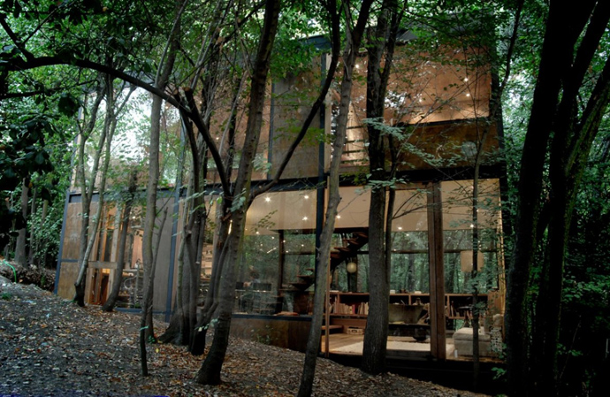 house modern contemporary in forest (2)