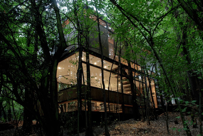 house modern contemporary in forest (20)