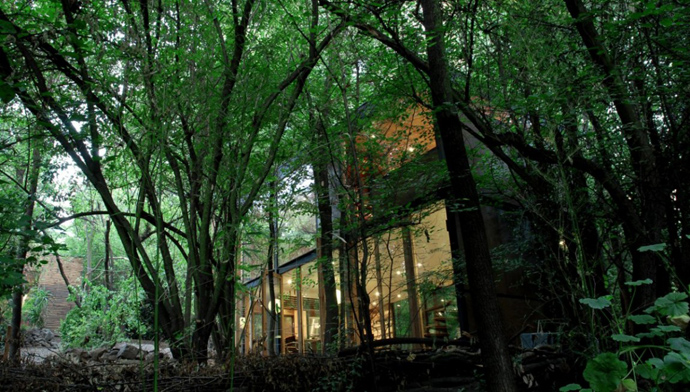 house modern contemporary in forest (3)