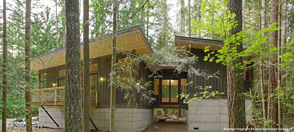 modern contemporary house forest (11)
