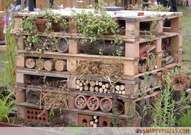 outdoor-pallet-ideas