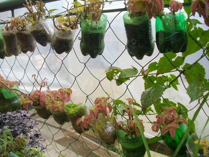 plastic bottle decorating ideas (5)