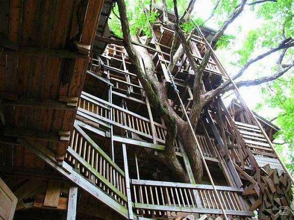 world largest treehouse in tennessee usa (2)