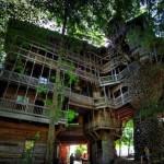แบบบ้านต้นไม้ความสูง 11 ชั้น ได้รับการบันทึกว่าเป็น บ้านต้นไม้ขนาดใหญ่ที่สุดในโลก