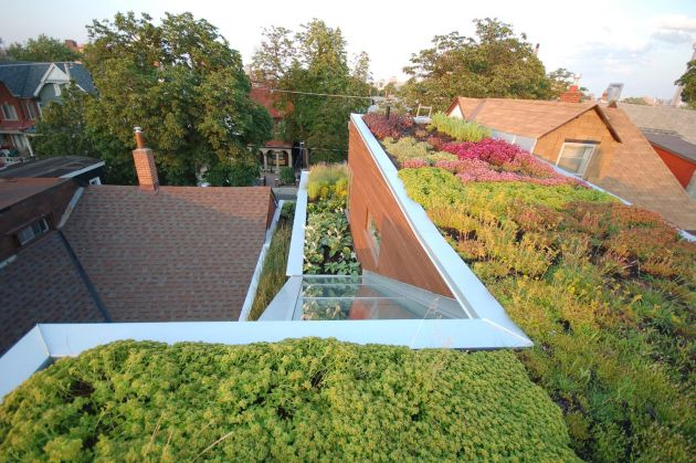 Euclid-Avenue-House-Green-Roof