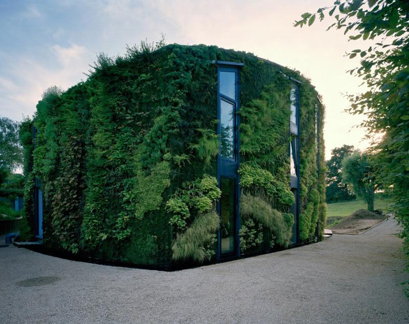Vertical-Garden-ideas1 (3)