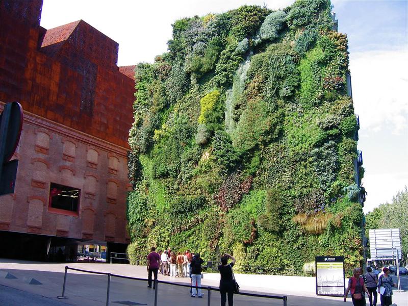 Vertical-Garden-ideas1 (4)