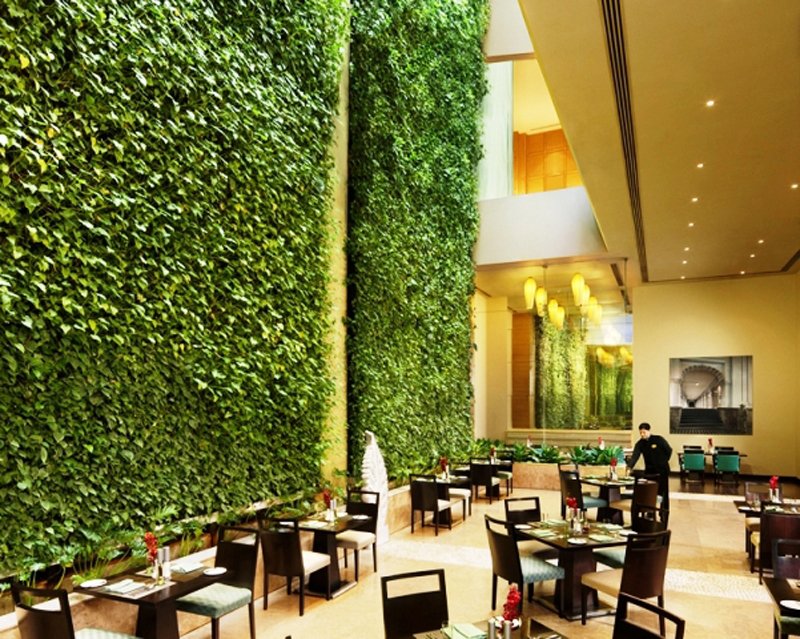 Vertical-Garden-ideas1 (9)