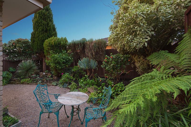 city house with garden in australia (4)