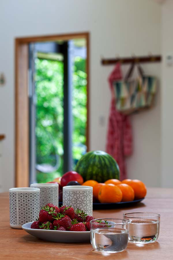 country modern cottage house in denmark (13)