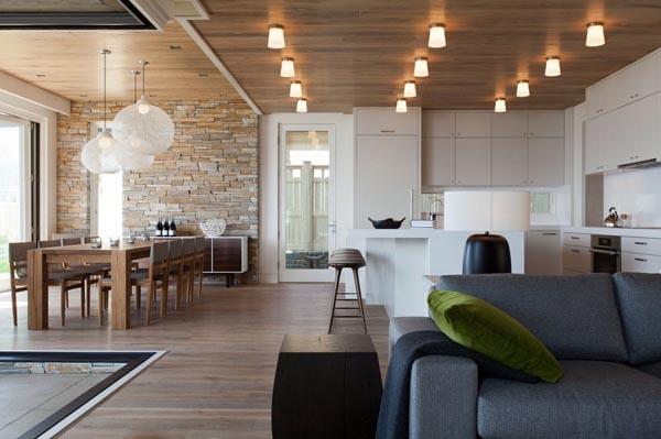 modern contemporary family house (2)