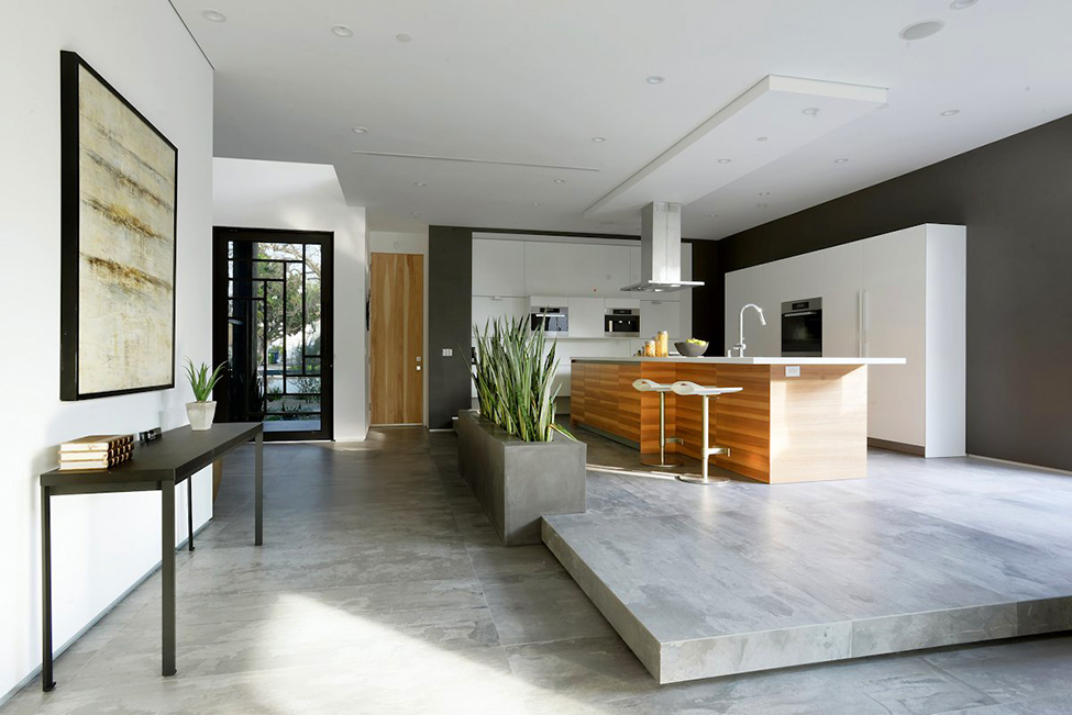 modern contemporary house  (6)