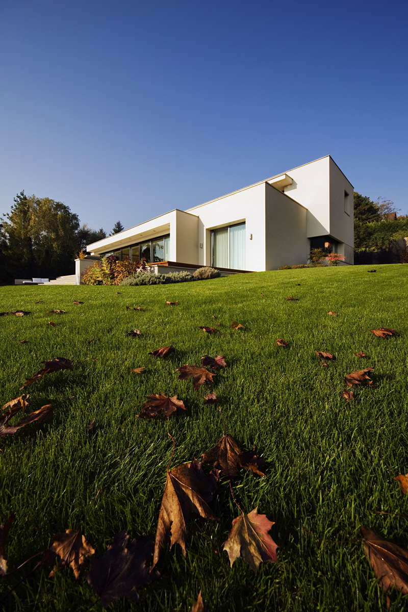 modern platform house in hungary (8)