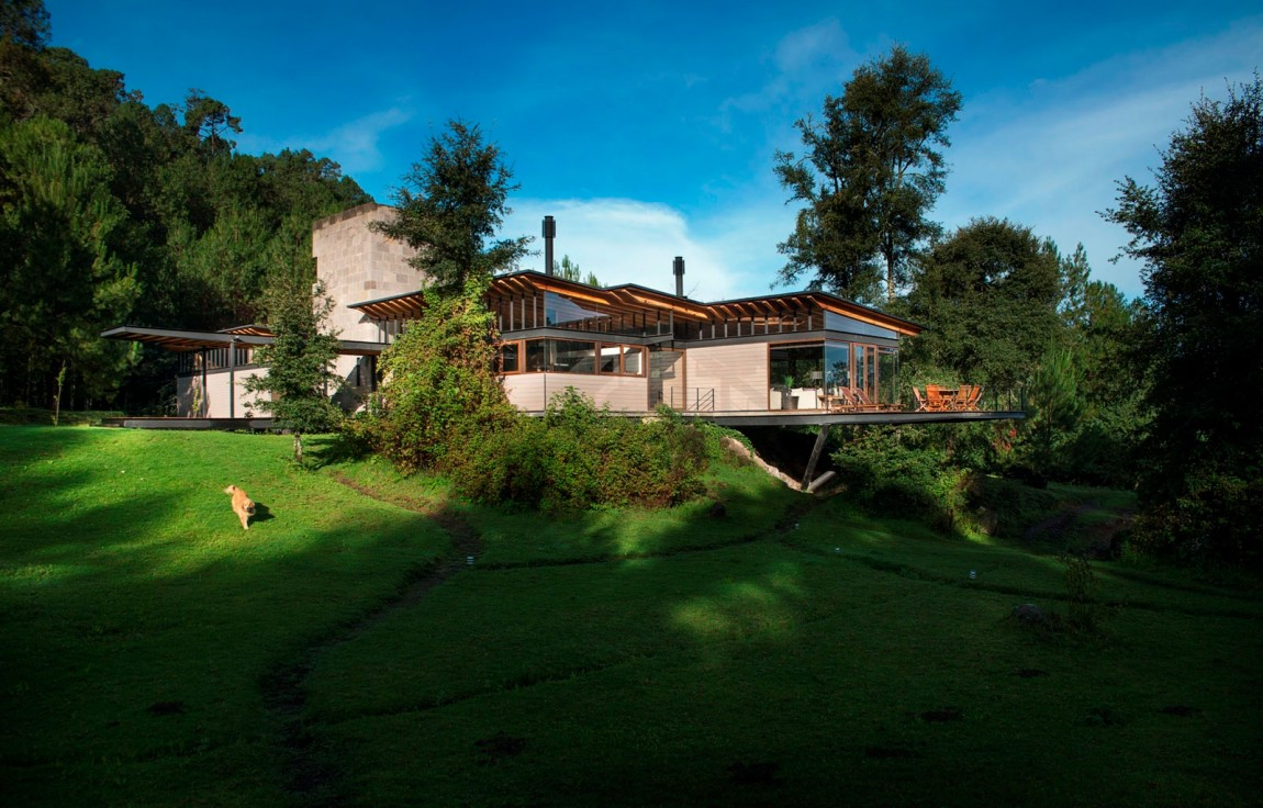 modern resident for perfect libing in forest (1)