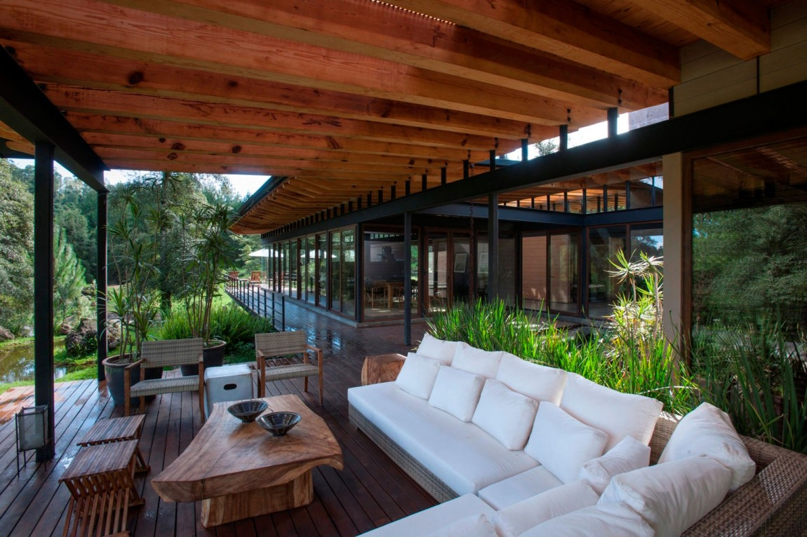 modern resident for perfect libing in forest (15)