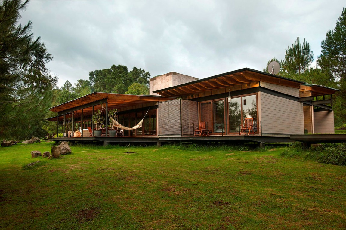 modern resident for perfect libing in forest (2)