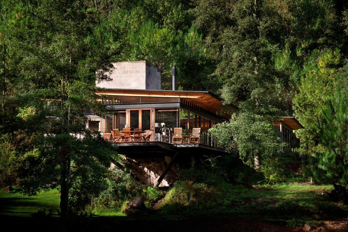 modern resident for perfect libing in forest (5)