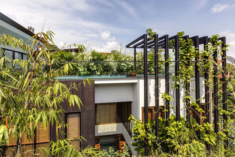 singapore townhome with natural (1)