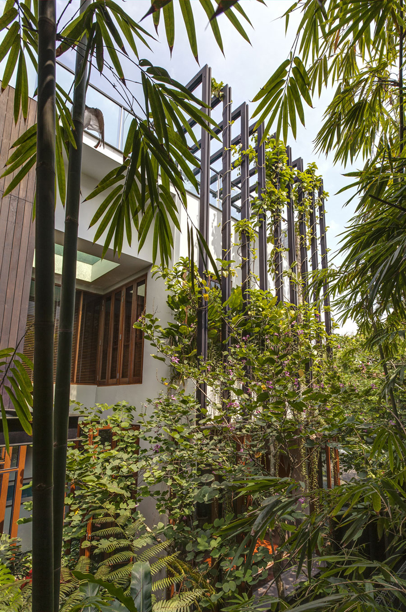 singapore townhome with natural (2)