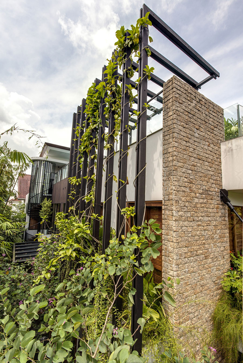 singapore townhome with natural (3)
