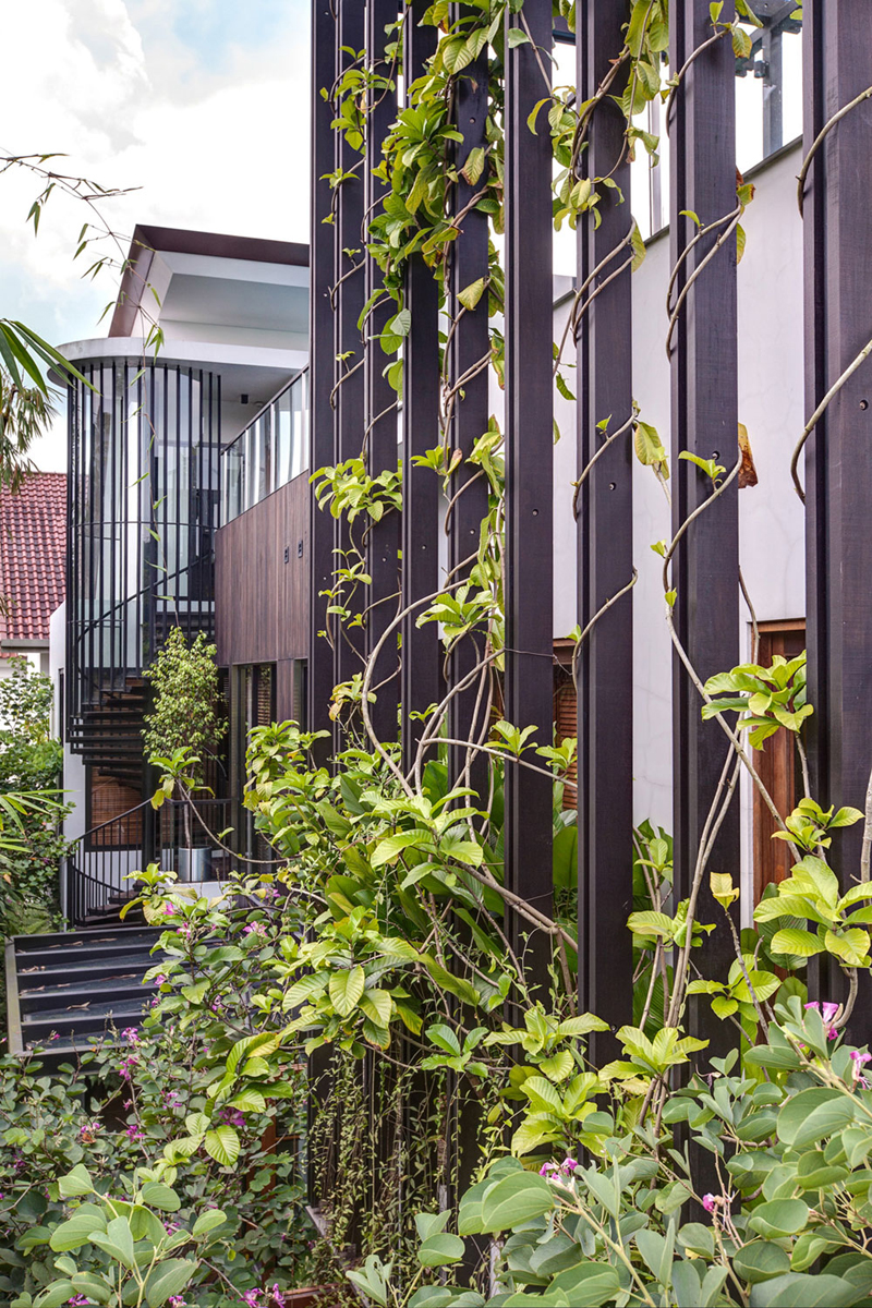 singapore townhome with natural (4)