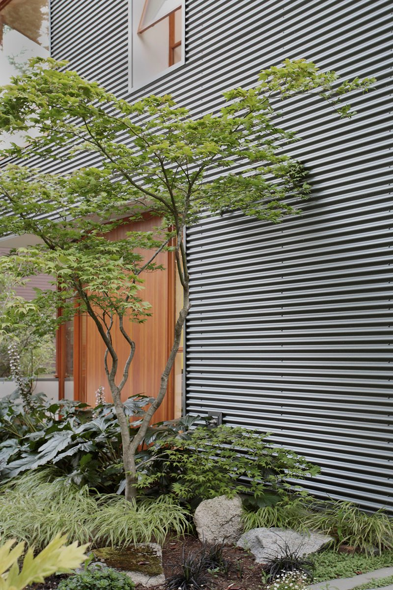 street house in usa with metal sheet wood and glass design (4)
