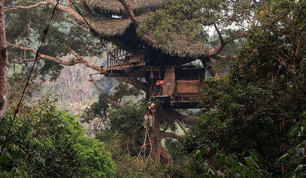 23 tree house ideas (13)
