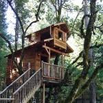 รวม 23 ไอเดียออกแบบ 'บ้านต้นไม้' ที่สวยงามและน่ารัก ไว้เติมเต็มความฝันของชีวิต