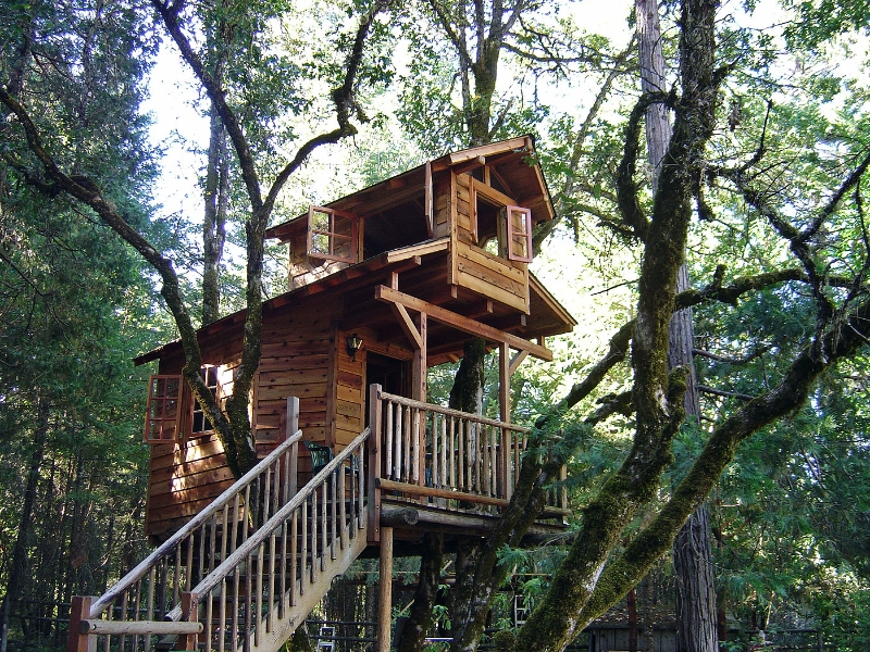 23 tree house ideas (6)