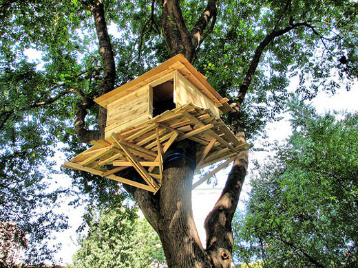 23 tree house ideas (7)