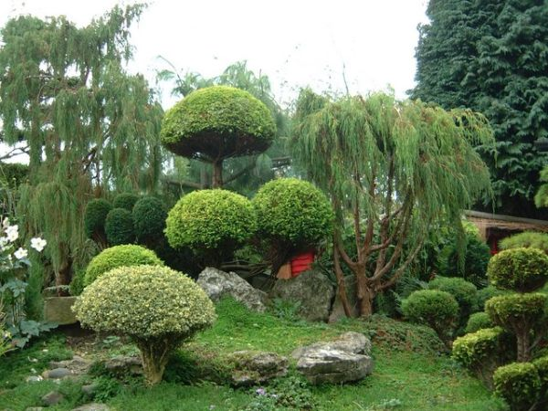 30 japanese garden ideas for decorating your house yard (5)