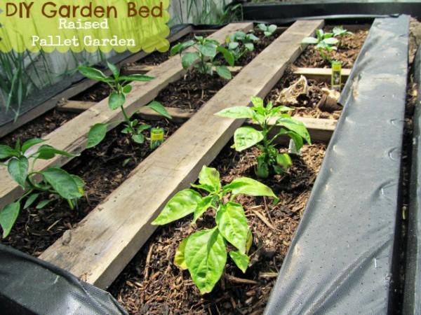 Raised-Wood-Pallet-Garden-Bed-600x450