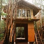 บ้านไม้แบบมีใต้ถุน ออกแบบเรียบง่ายในชีวิตธรรมชาติ เพื่อความสุขอันแสนสงบ