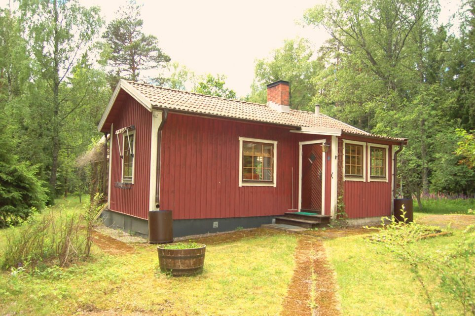 mini cottage house plan idea (1)