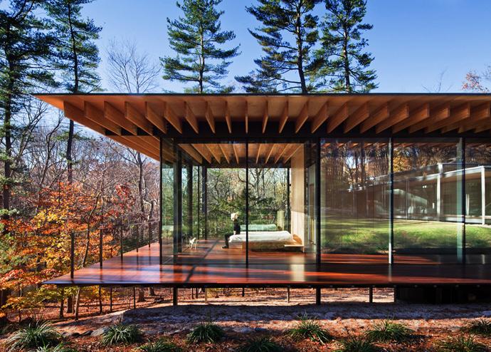 modern glass wall wooden house (1)