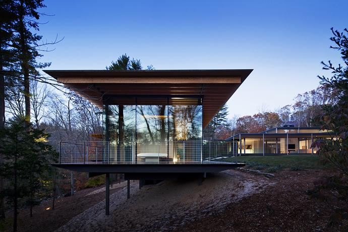 modern glass wall wooden house (13)