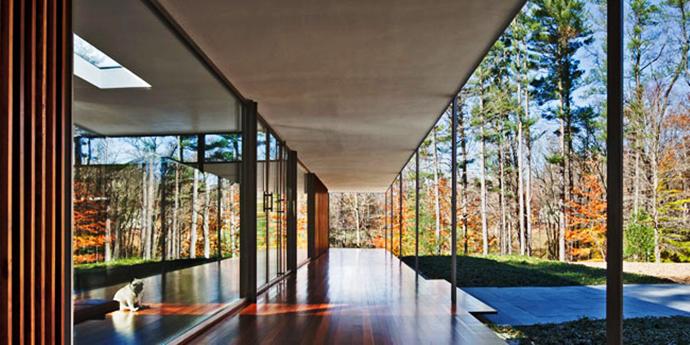 modern glass wall wooden house (7)