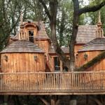 บ้านต้นไม้ ออกแบบในแนวคลาสสิค กลางบรรยากาศร่มรื่น พร้อมภายในใช้งานได้ครบครัน
