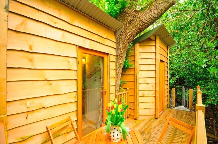 acorn-tree-house-7